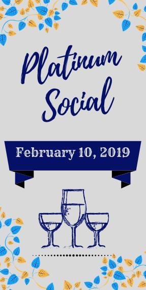 Platinum Social_ Feb 2019 _ Website Skinny Template